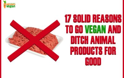 17 Solid Reasons To Go Vegan And Ditch Animal Products For Good