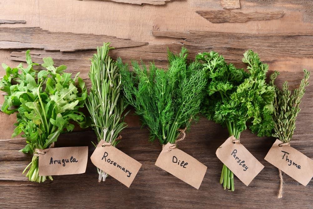 several fresh herbs