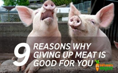 9 Reasons Why Giving Up Meat is Good for You