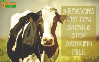 9 Reasons Why You Should Stop Drinking Milk