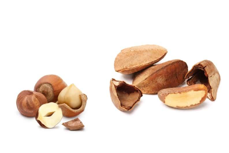 brazil nuts and hazelnuts