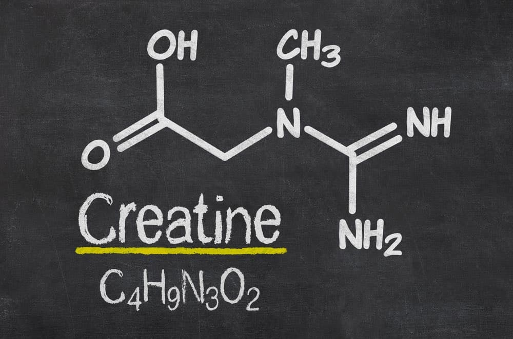 creatine nutrient
