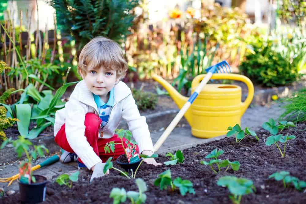 girl in the garden planting food