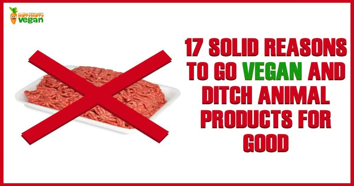 give your reason for becoming a vegetarian and not eating meat Have good reasons if you just want to become vegetarian for there's no need to give up all meat at being a vegetarian is not a license to eat junk.