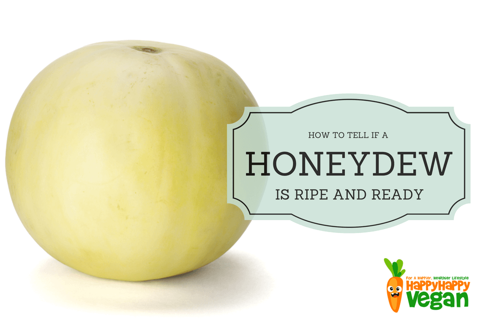 How To Tell If A Honeydew Melon Is Ripe And What To Do If It S Not Happy Happy Vegan One can tell that a cantaloupe is ripe by looking at the outer rind of the fruit. how to tell if a honeydew melon is ripe