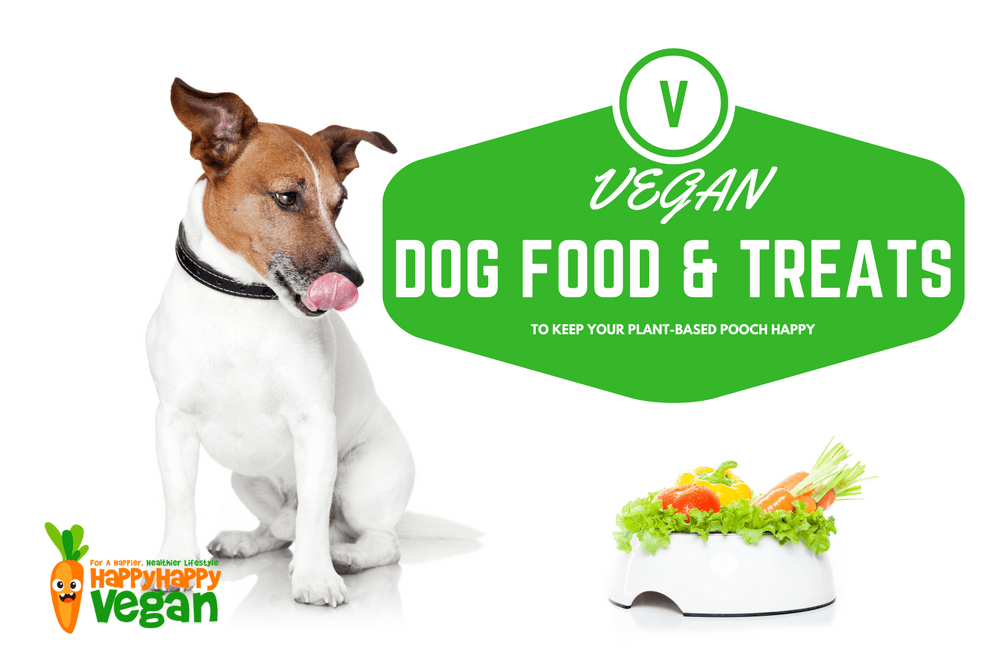 Vegan Dog Food And Treats To Keep Your Plant-Based Pooch Happy