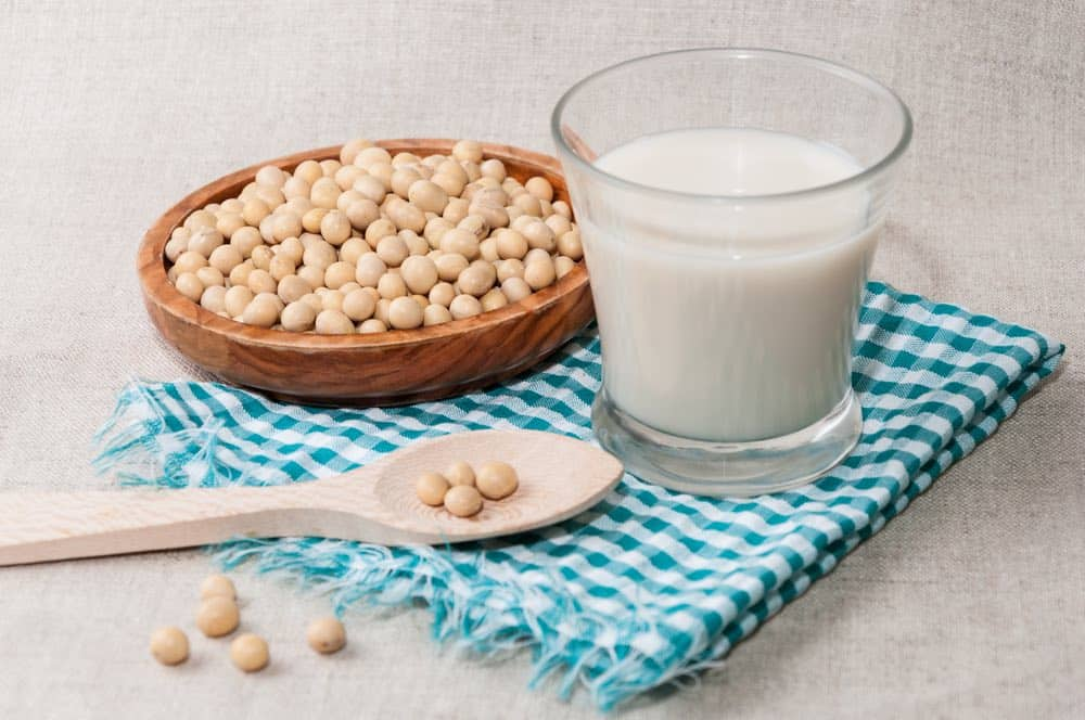 soybeans and soy milk made with soy milkmakers