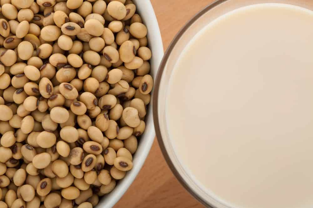 beans for use in soya milk machine