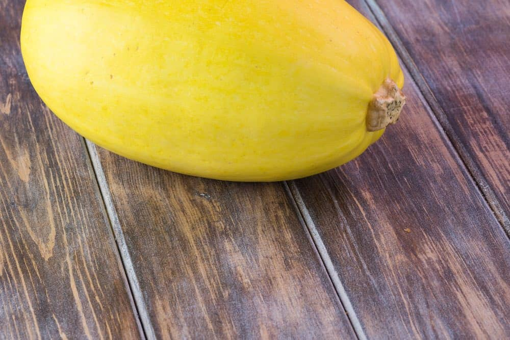 fresh or frozen spaghetti squash