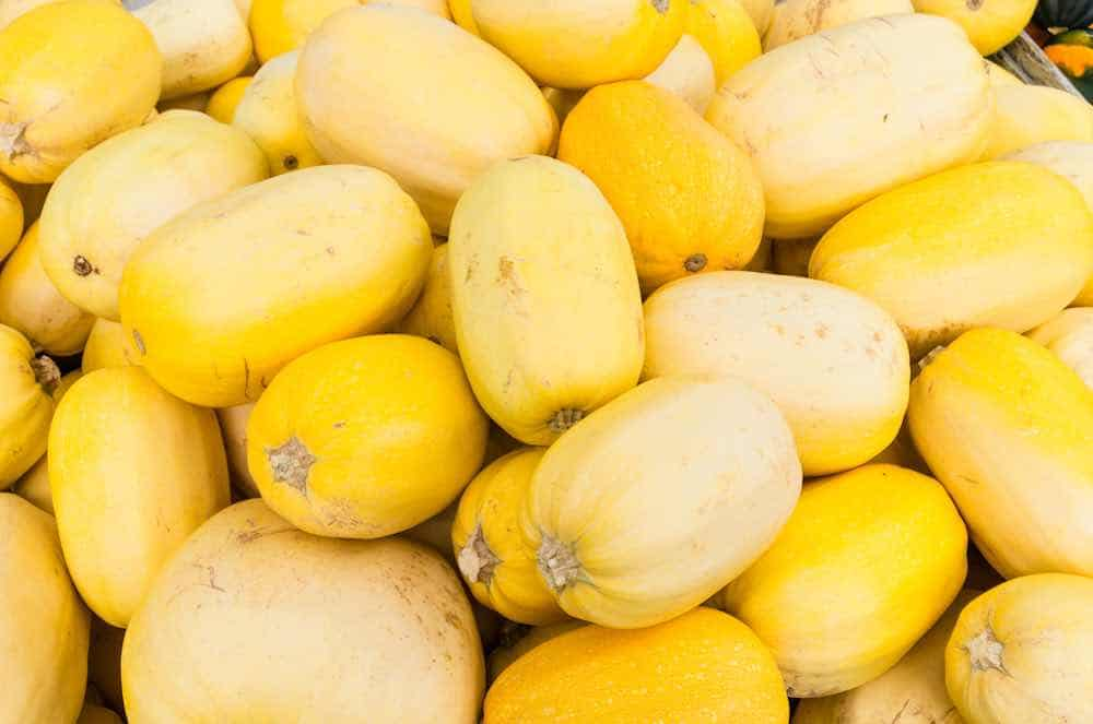 how to store spaghetti squash