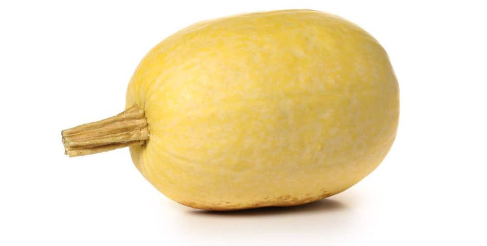 preparing a spaghetti squash for freezing