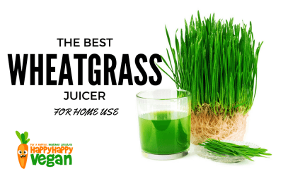 Best Wheatgrass Juicer: Which Masticating Extractor Should You Buy?