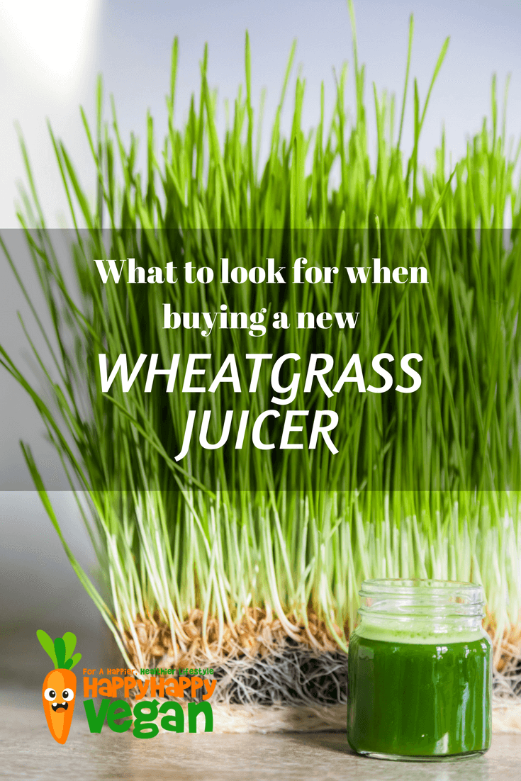 Fully grown wheatgrass in a container with a glass of wheatgrass juice by its side. Text overlay that reads: What to look for when buying a new wheatgrass juicer