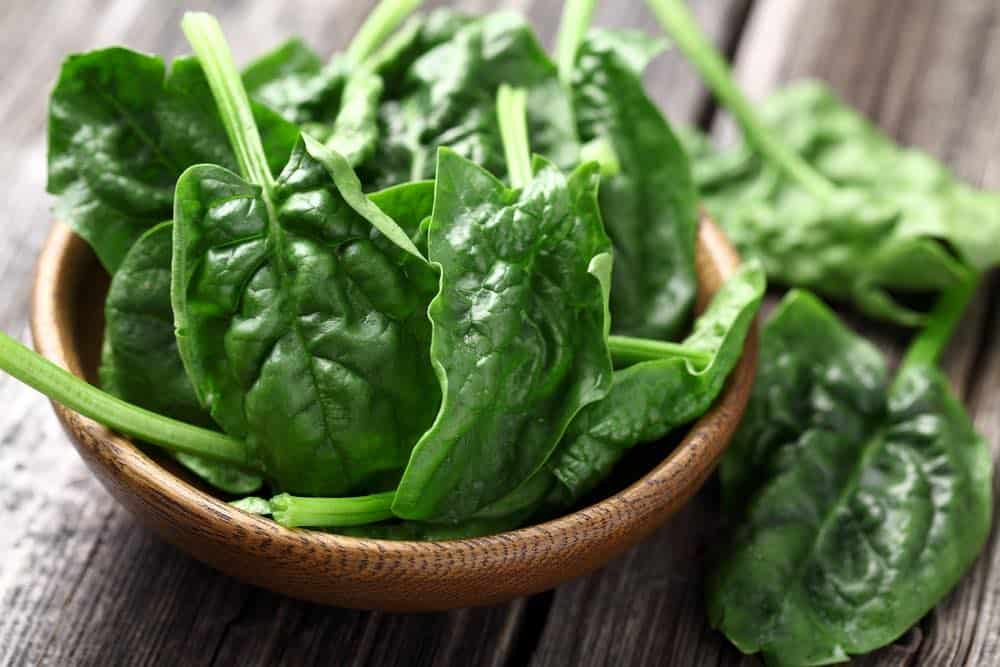 How to tell if spinach is bad - this is a fresh bowl of green leaves