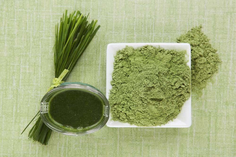 wheatgrass powder and shot of juice