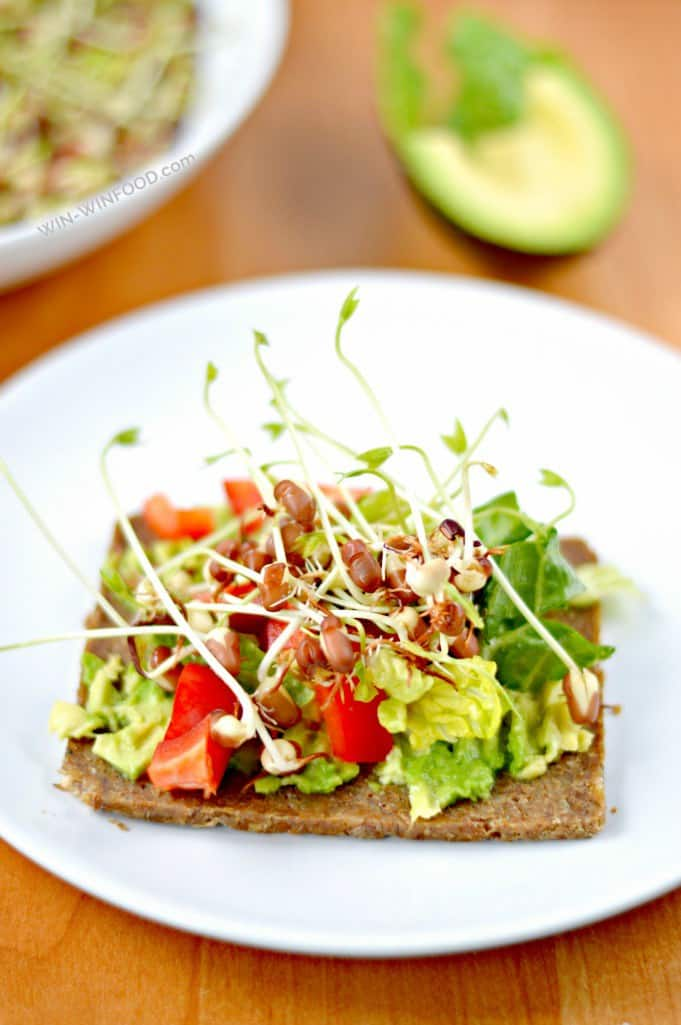 Avocado and sprouted bean sandwiches