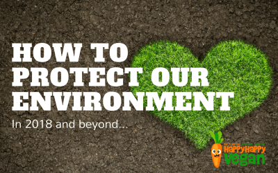 How To Protect Our Environment In 2018 And Beyond