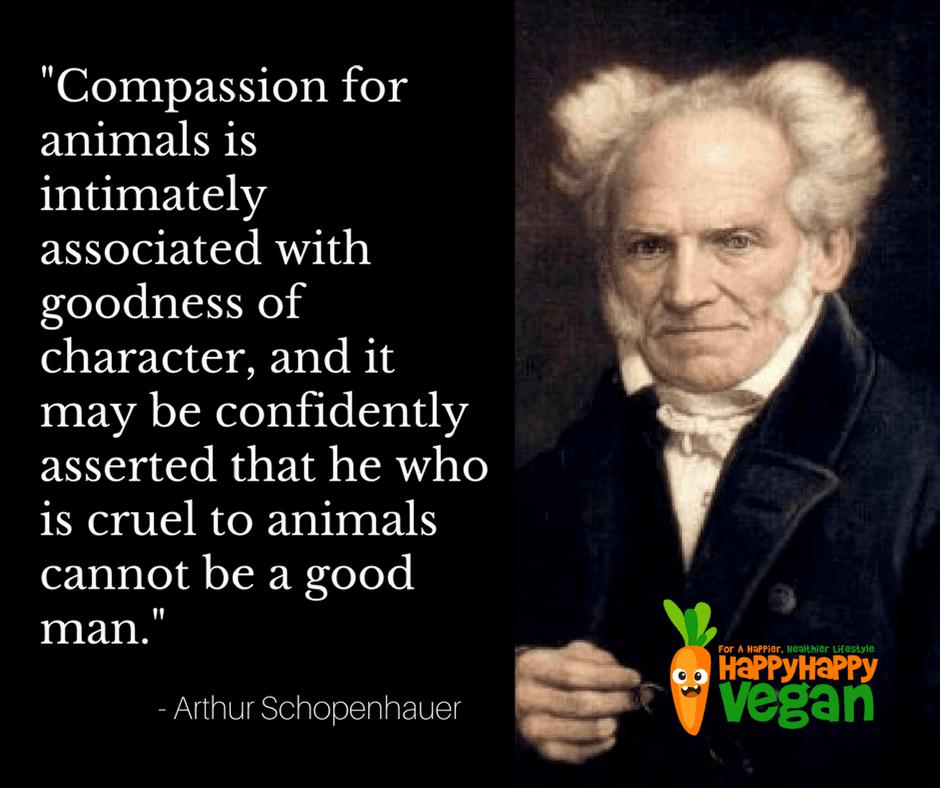Compassion quote by Arthur Schopenhauer