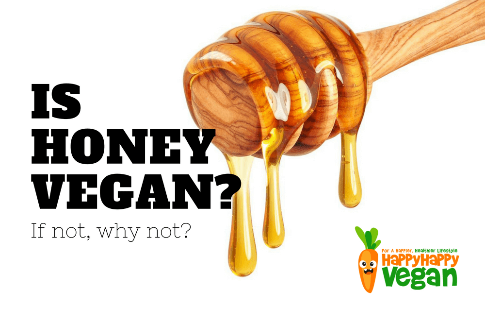 Is Honey Vegan? Can Vegans Eat Honey? If Not, Why Not?