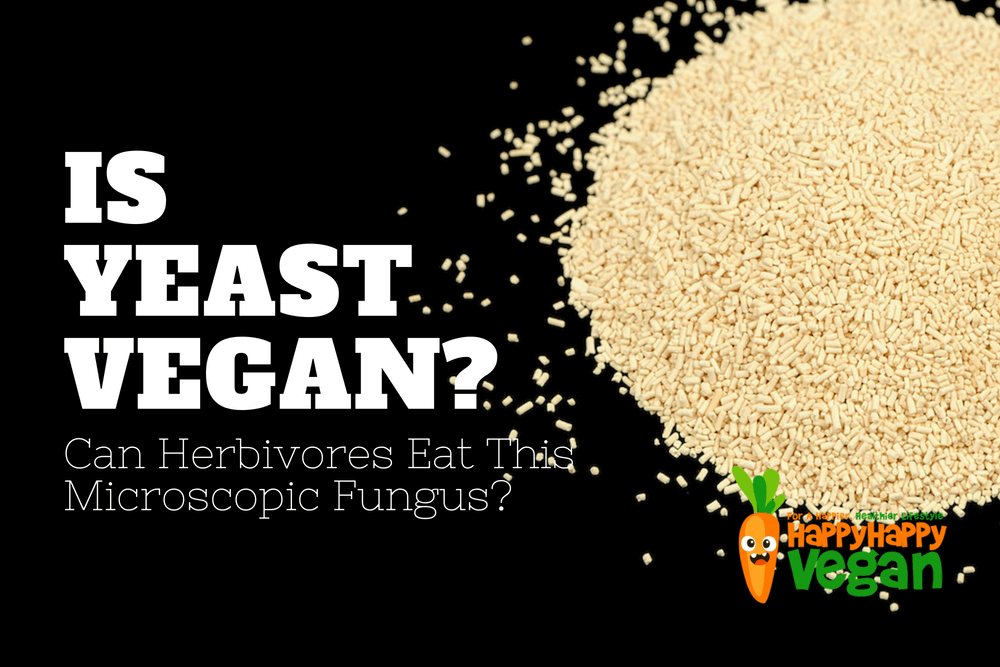 Is Yeast Vegan? Can Herbivores Eat This Microscopic Fungus?