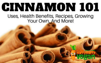 Cinnamon 101: Uses, Benefits, Recipes, Remedies, And More