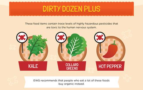 kale dirty dozen