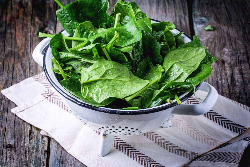 spinach leaves in a white colander on a tea towel