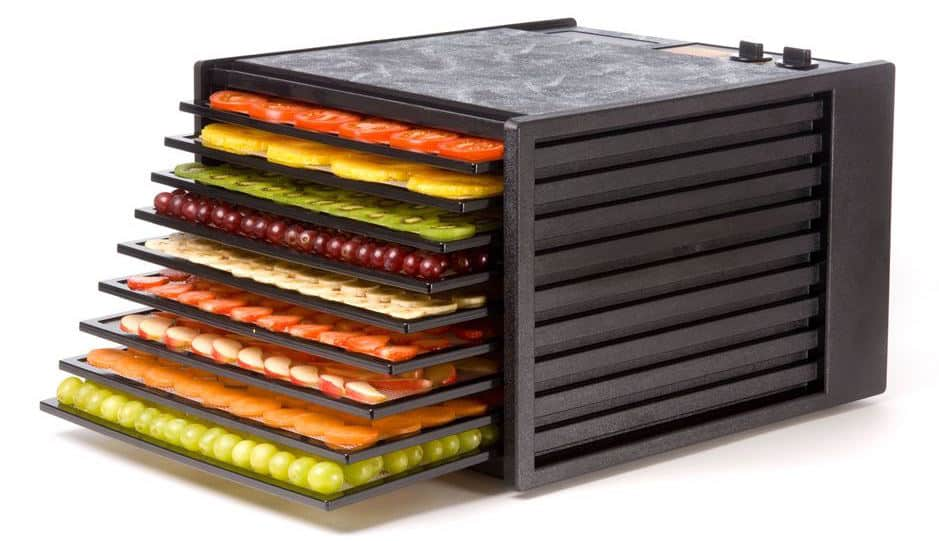 Excalibur 3926TB food dehydrator best dryer for regular use