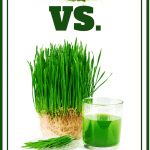wheatgrass powder vs wheatgrass juice pin