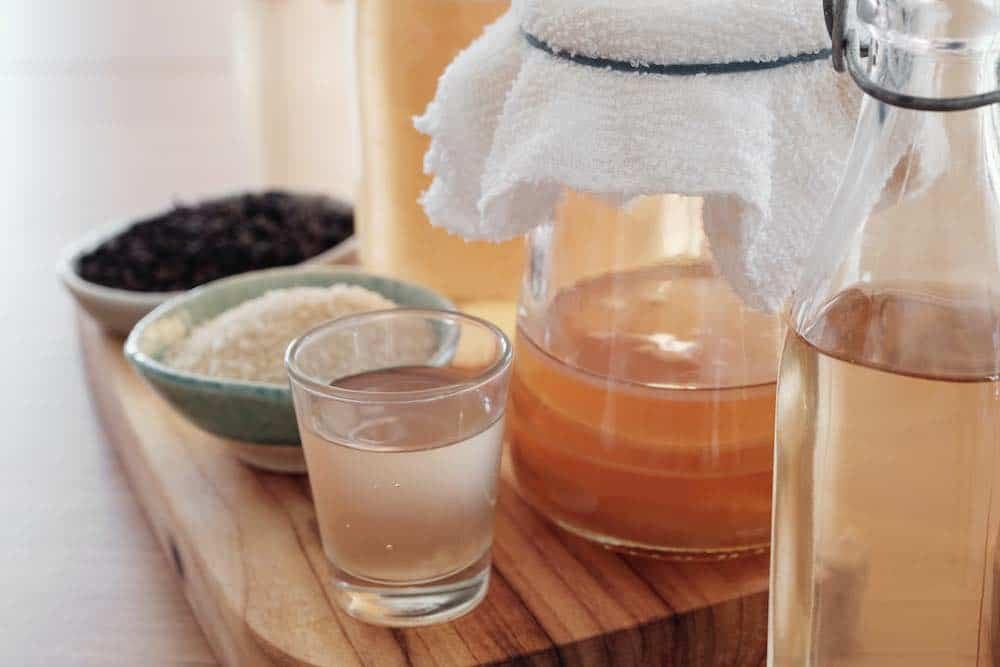 kombucha brewing at home kit