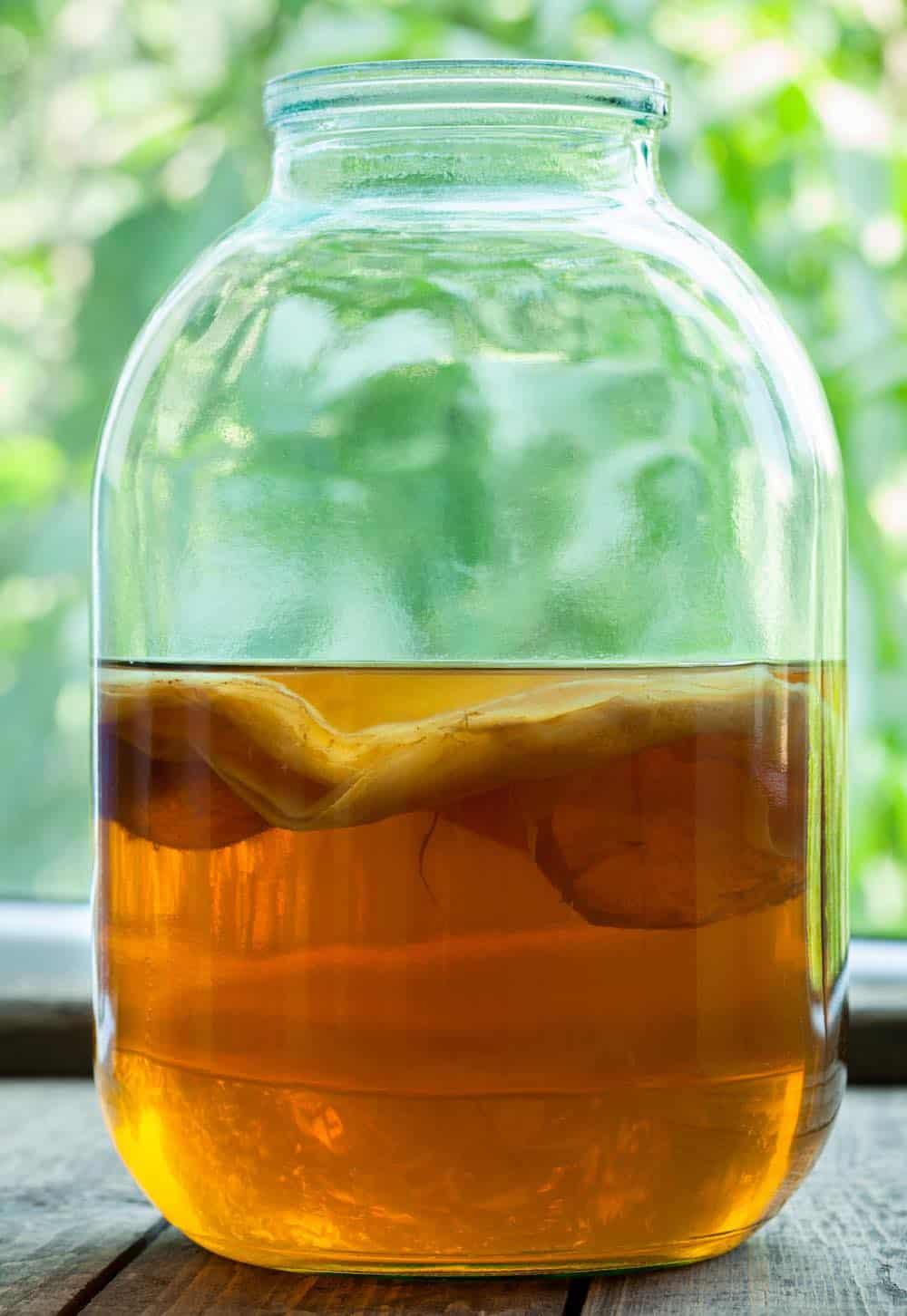 jar of kombucha brewing