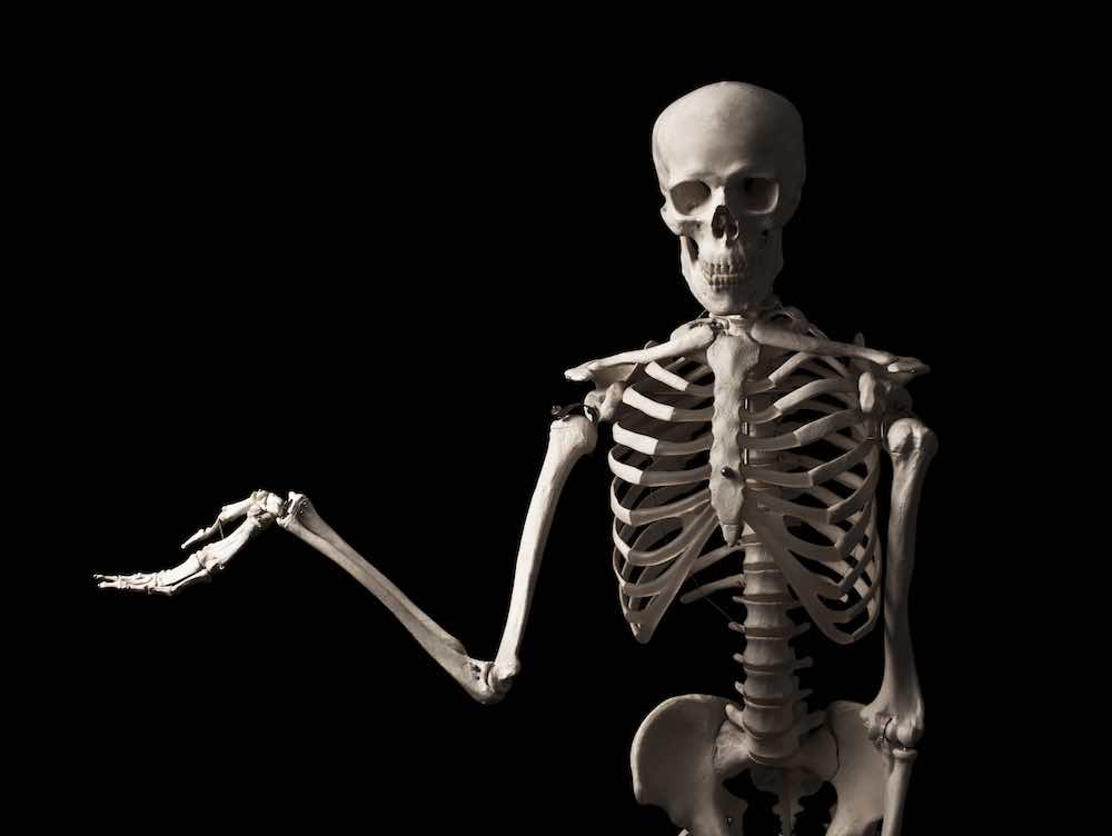 skeleton depicting bone health with almonds