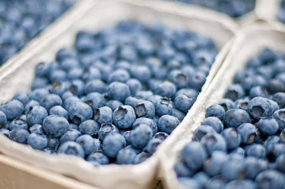 blueberries in punnet at market