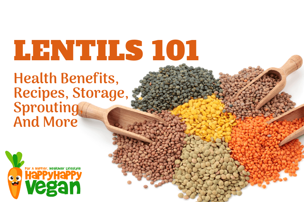 Lentils 101: Health Benefits, Recipes, Storage, Sprouting, And More